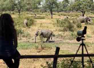 Zambia Adventure 1