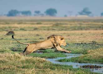 Zambia Adventure 2