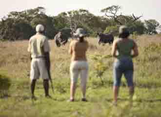 S Africa Classic 1