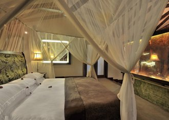 Arusha Coffee Lodge + Crater Lodge + Faru Faru + Singita Mara + Mnemba