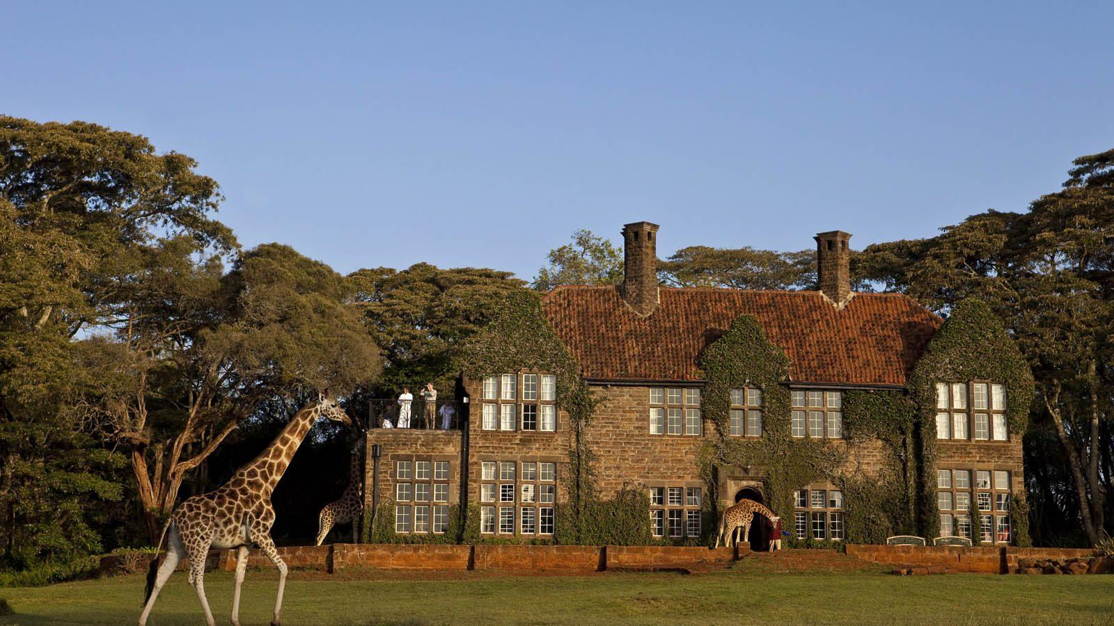 Giraffe Manor - 4