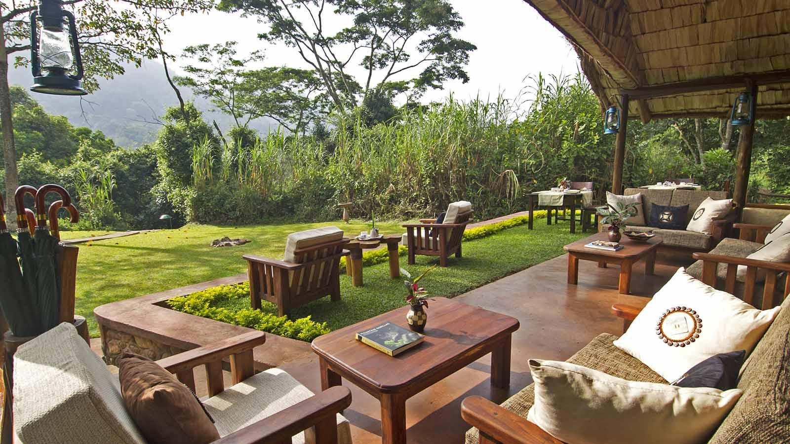 Gorilla Forest Lodge - 4