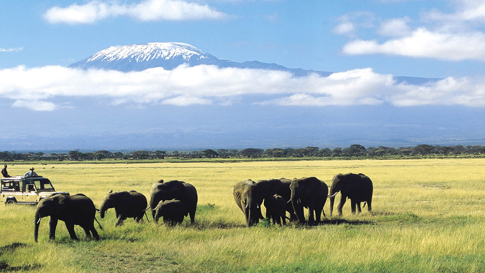 Amboseli National Park - 3