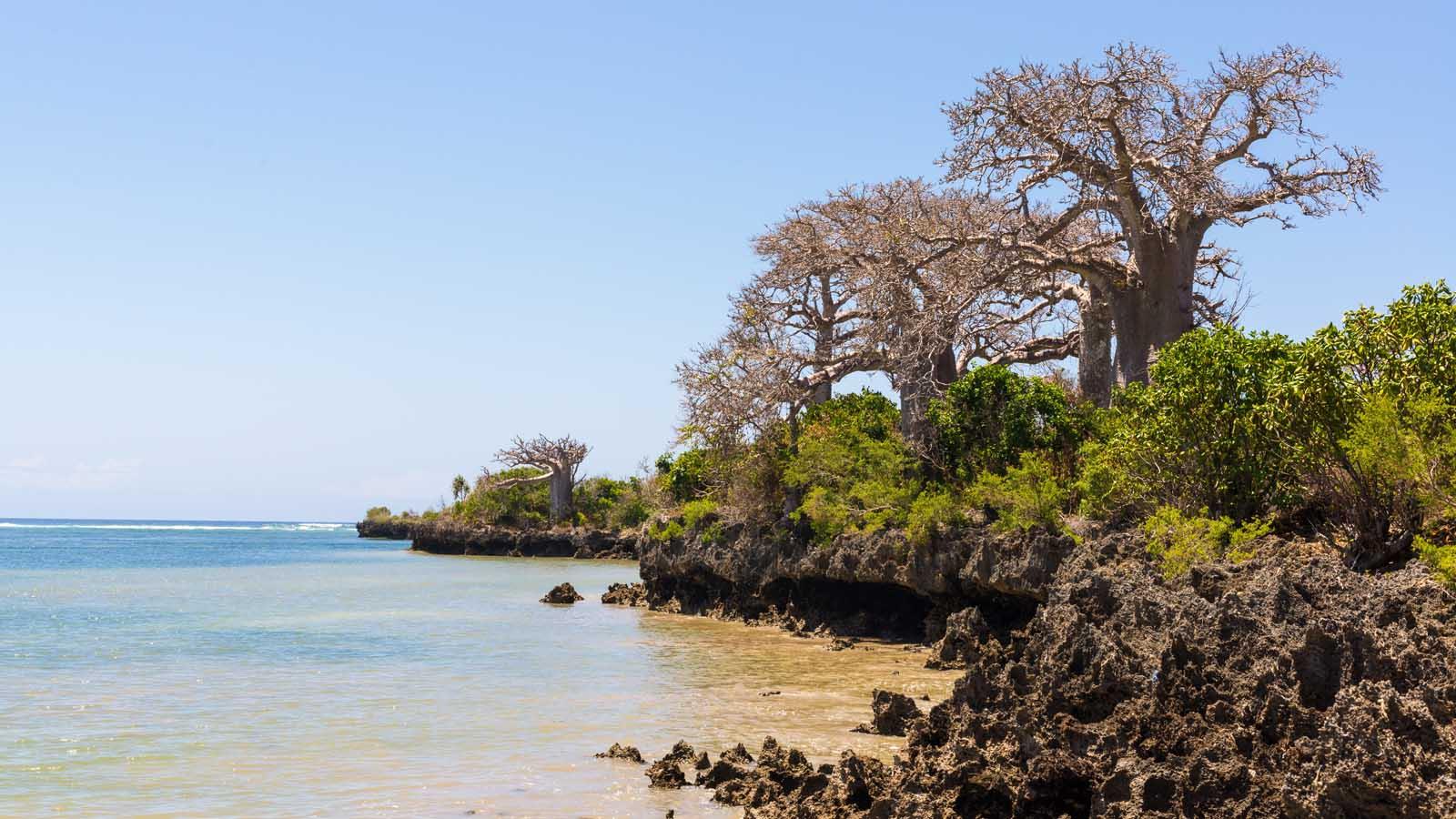 Pemba Island - 0