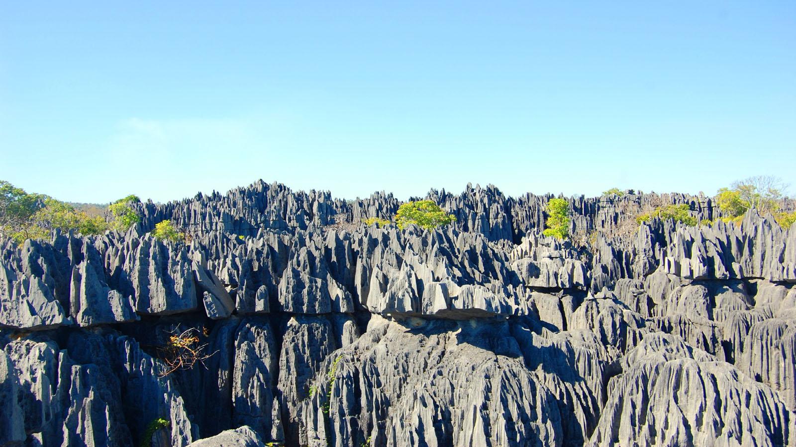 Tsingy de Bemaraha - 0